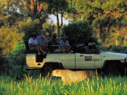 SAFARI PHOTOS – Excursion en Afrique